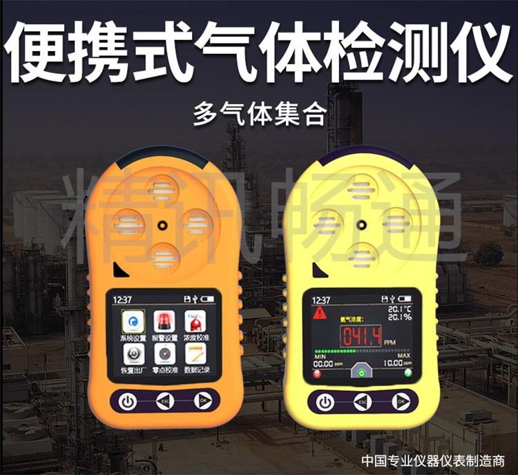 便携式气体监测仪